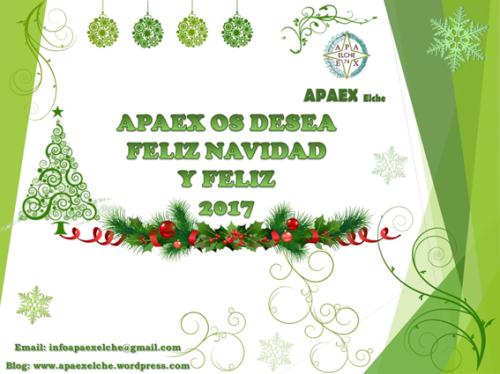 apaex-navidad-2016-2017